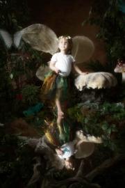 Fairies__MG_0106-Edit.jpg