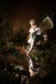 Fairies__MG_9639-Edit.jpg