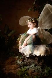 Fairies__MG_0086-Edit.jpg