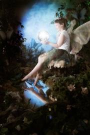 Fairies__MG_9686-Edit.jpg