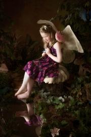 Fairies__MG_9952-Edit.jpg