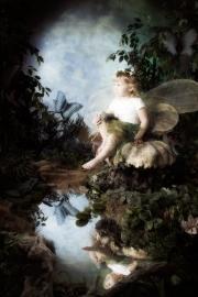 Fairies__MG_9712-Edit.jpg