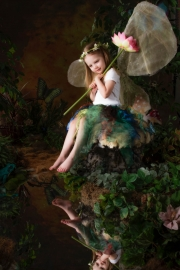 Fairies__MG_9881-Edit.jpg