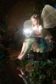 Fairies__MG_9888-Edit.jpg