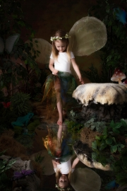 Fairies__MG_9893-Edit-Edit.jpg